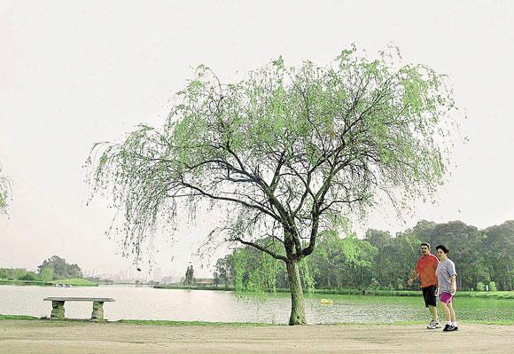 Eventos culturais divertem público no Parque Ecológico