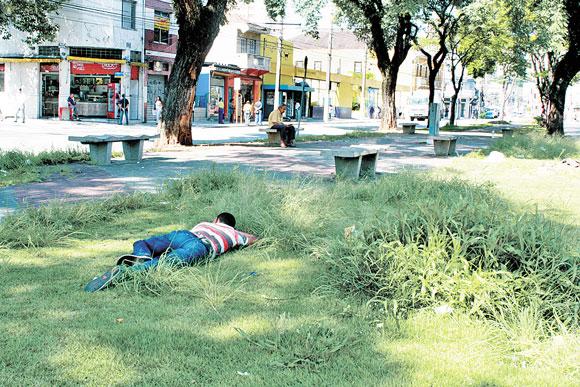 ZELADORIA – Mato ocupa terreno e praças no Tatuapé