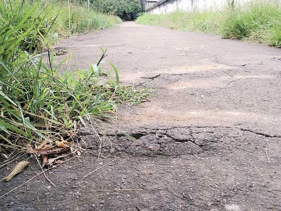 PARQUE ANÁLIA FRANCO – Mato domina e piso ruim põe caminhada em risco