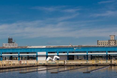 Recursos hídricos: R$ 118 mi