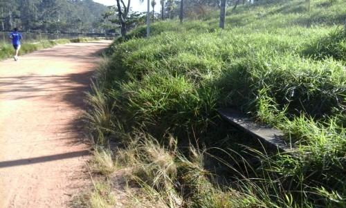 Parque do Carmo está sem manutenção