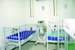 Animaniac's: Hospital Veterinário 24h é inaugurado na Mooca