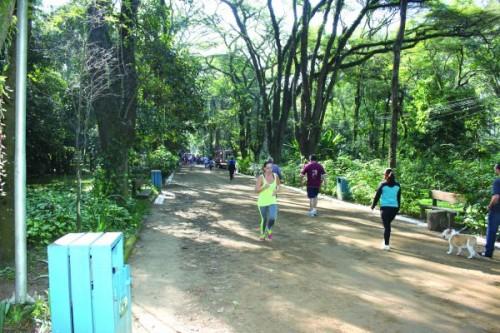 Parque do Piqueri tem música aos domingos