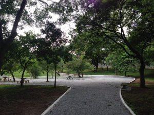 Parque  Municipal do Tatuapé: será que agora vai?