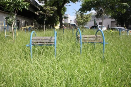 Praça Pádua Dias: mato encobre equipamentos