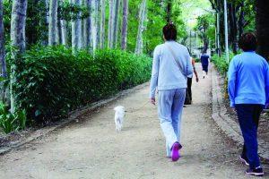 Parque do Piqueri – Preocupação com assaltos