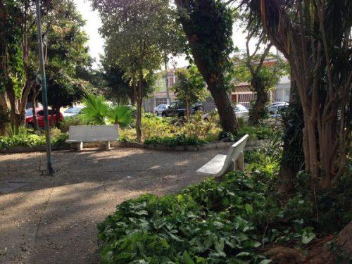 Praça no Tatuapé chama atenção pela sua zeladoria