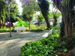 Zeladoria na Praça Hélio de Oliveira é destaque
