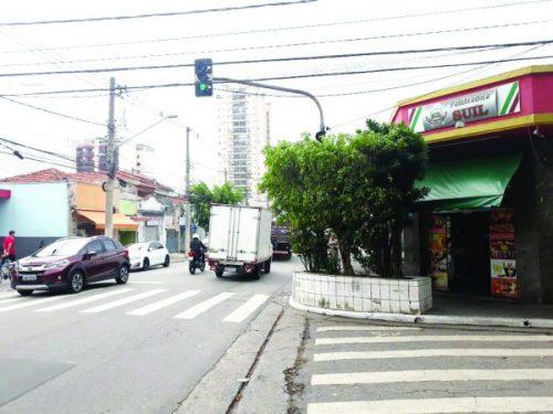 Manutenção – Árvore cobre semáforo